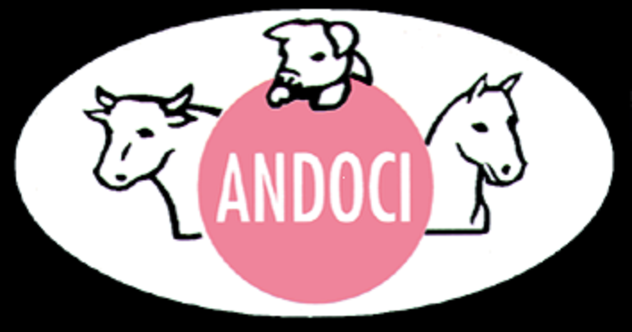 Andoci